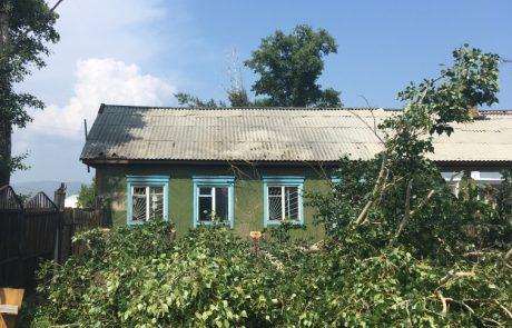 Валка деревьев Улан-Удэ